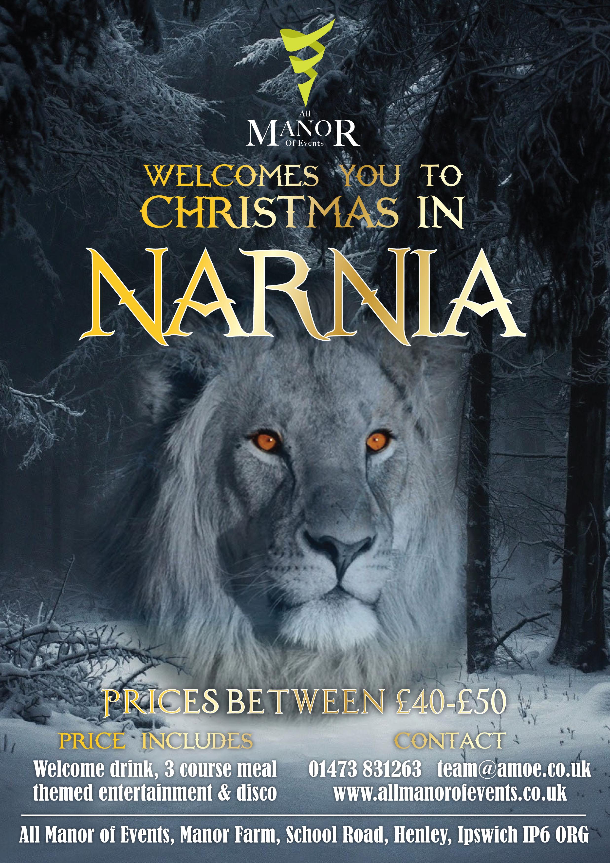 narnia Flyer 2
